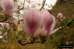 2013-04-27 Compton Acres Gardens, Poole, Dorset.  (20)020
