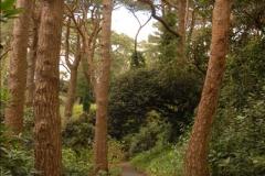 2013-04-27 Compton Acres Gardens, Poole, Dorset.  (32)032