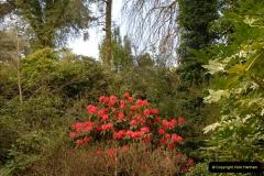 2013-04-27 Compton Acres Gardens, Poole, Dorset.  (42)042