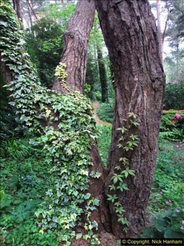 2015-05-22 Compton Acres Gardens, Poole, Dorset.  (19)