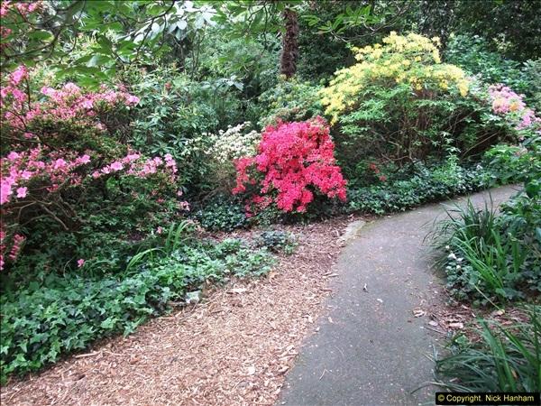 2015-05-22 Compton Acres Gardens, Poole, Dorset.  (20)