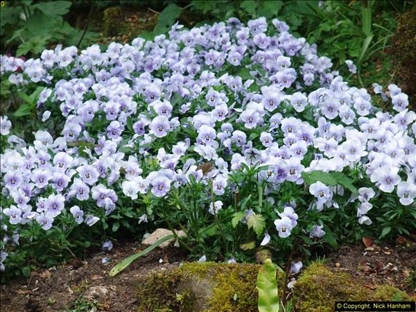 2015-05-22 Compton Acres Gardens, Poole, Dorset.  (32)