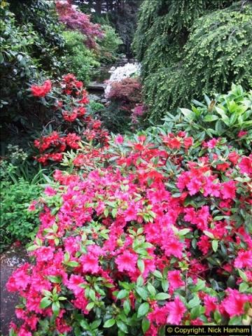 2015-05-22 Compton Acres Gardens, Poole, Dorset.  (53)