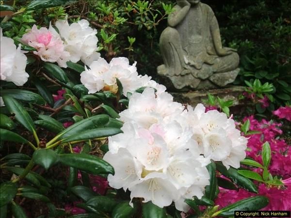 2015-05-22 Compton Acres Gardens, Poole, Dorset.  (59)