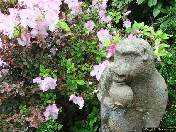 2015-05-22 Compton Acres Gardens, Poole, Dorset.  (66)