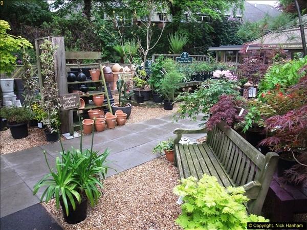 2015-05-22 Compton Acres Gardens, Poole, Dorset.  (75)