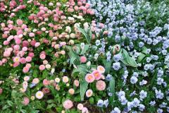 2015-05-22 Compton Acres Gardens, Poole, Dorset.  (35)