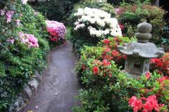 2015-05-22 Compton Acres Gardens, Poole, Dorset.  (46)