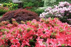 2015-05-22 Compton Acres Gardens, Poole, Dorset.  (52)