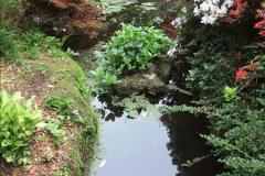 2015-05-22 Compton Acres Gardens, Poole, Dorset.  (55)