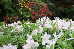 2015-05-22 Compton Acres Gardens, Poole, Dorset.  (56)