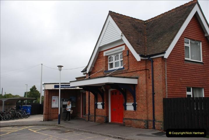 2011-08-16 Bittern @ Branksome, Poole, Dorset.  (1)065