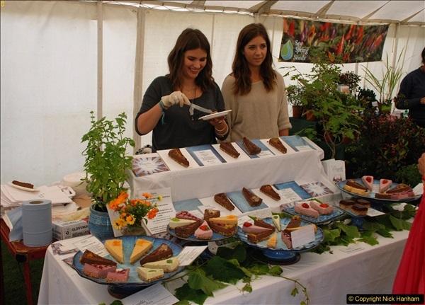 2016-09-11 Sturminster Newton Cheese Festival, Sturminster Newton, Dorset.  (101)365