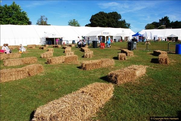 2016-09-11 Sturminster Newton Cheese Festival, Sturminster Newton, Dorset.  (12)276