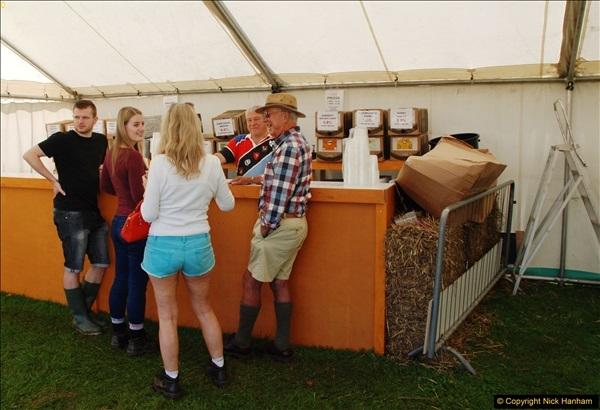 2016-09-11 Sturminster Newton Cheese Festival, Sturminster Newton, Dorset.  (14)278