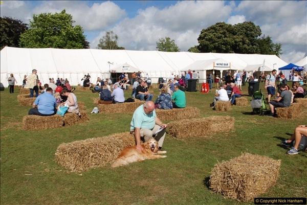 2016-09-11 Sturminster Newton Cheese Festival, Sturminster Newton, Dorset.  (167)431