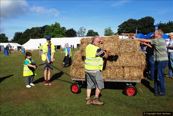 2016-09-11 Sturminster Newton Cheese Festival, Sturminster Newton, Dorset.  (5)269