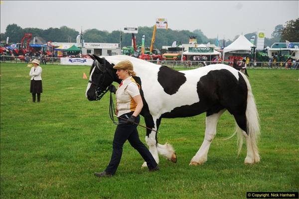2014-09-06 Dorset County Show, Dorchester, Dorset (20)020