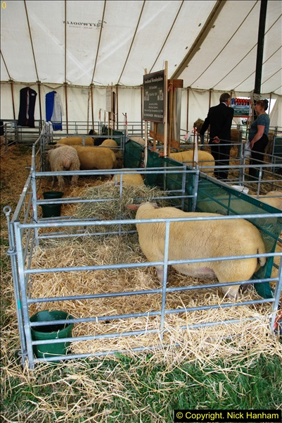 2014-09-06 Dorset County Show, Dorchester, Dorset (341)341