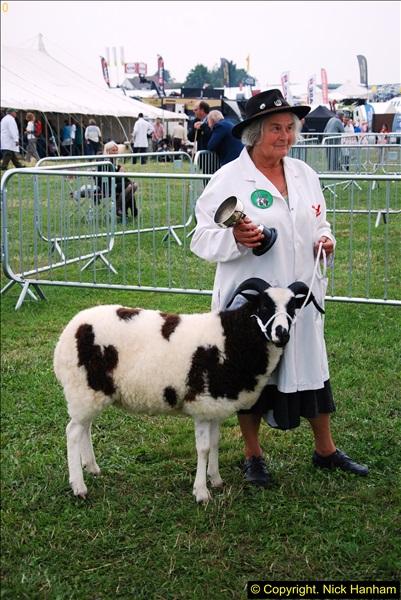 2014-09-06 Dorset County Show, Dorchester, Dorset (345)345