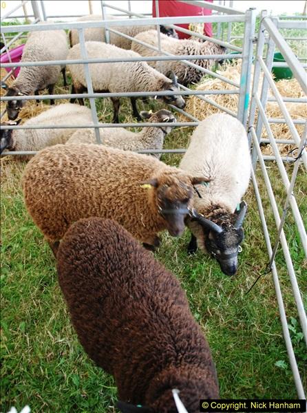 2014-09-06 Dorset County Show, Dorchester, Dorset (356)356