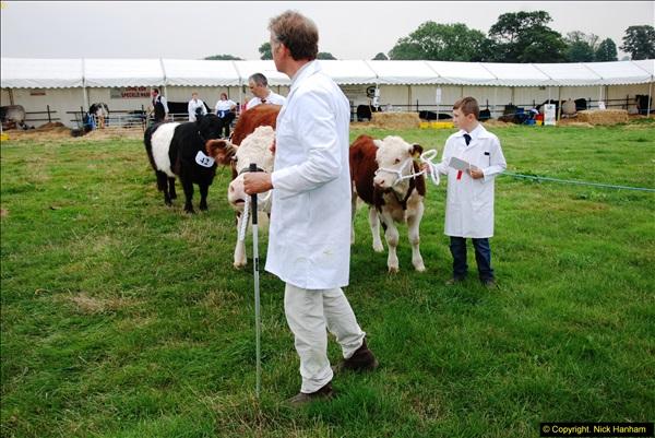 2014-09-06 Dorset County Show, Dorchester, Dorset (380)380
