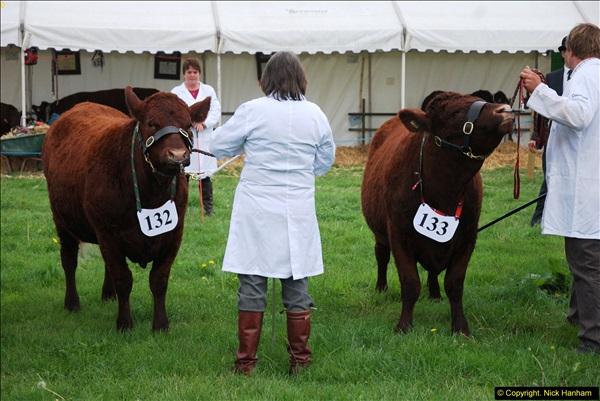 2014-09-06 Dorset County Show, Dorchester, Dorset (391)391