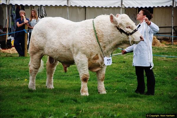 2014-09-06 Dorset County Show, Dorchester, Dorset (394)394