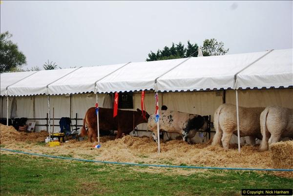 2014-09-06 Dorset County Show, Dorchester, Dorset (396)396