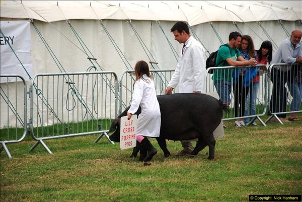 2014-09-06 Dorset County Show, Dorchester, Dorset (399)399