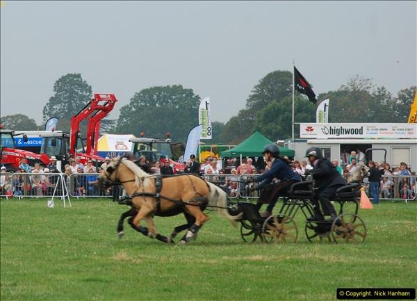 2014-09-06 Dorset County Show, Dorchester, Dorset (464)464