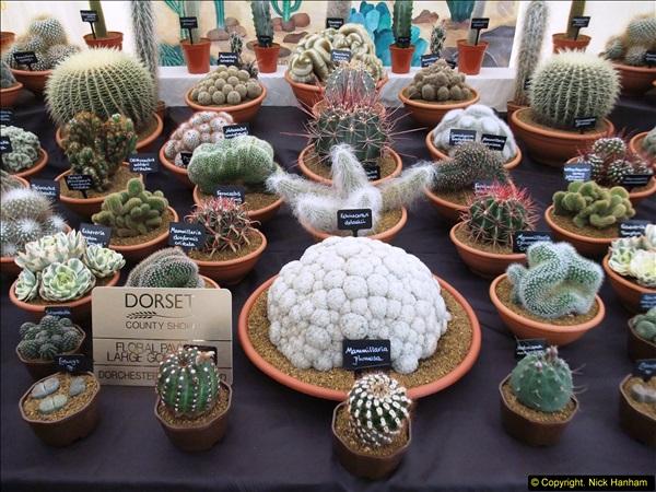 2014-09-06 Dorset County Show, Dorchester, Dorset (494)494