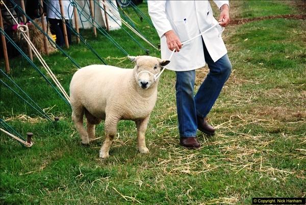2014-09-06 Dorset County Show, Dorchester, Dorset (348)348