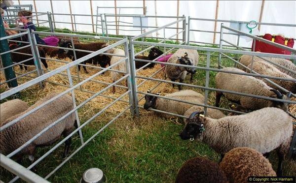 2014-09-06 Dorset County Show, Dorchester, Dorset (357)357