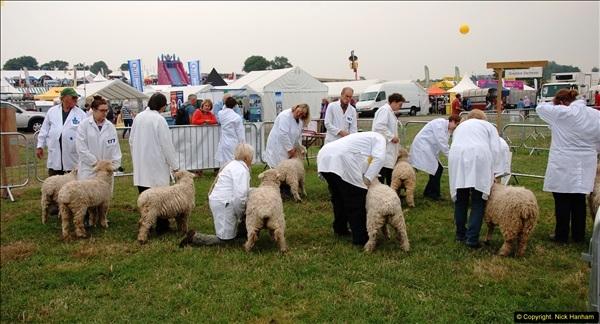2014-09-06 Dorset County Show, Dorchester, Dorset (363)363