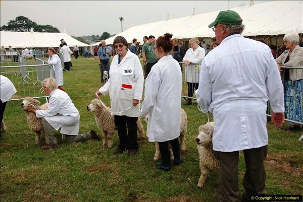 2014-09-06 Dorset County Show, Dorchester, Dorset (364)364