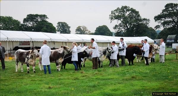 2014-09-06 Dorset County Show, Dorchester, Dorset (373)373