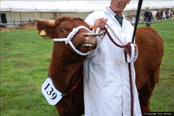 2014-09-06 Dorset County Show, Dorchester, Dorset (377)377