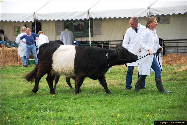 2014-09-06 Dorset County Show, Dorchester, Dorset (383)383