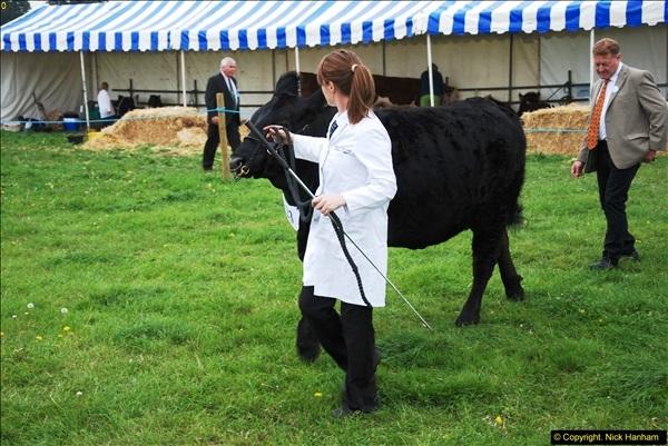 2014-09-06 Dorset County Show, Dorchester, Dorset (385)385