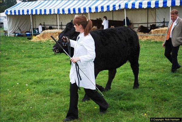2014-09-06 Dorset County Show, Dorchester, Dorset (386)386