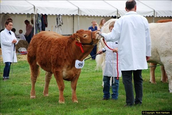2014-09-06 Dorset County Show, Dorchester, Dorset (393)393