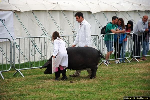 2014-09-06 Dorset County Show, Dorchester, Dorset (400)400