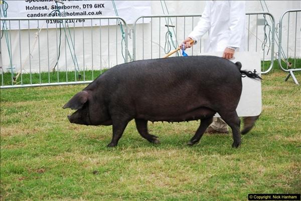 2014-09-06 Dorset County Show, Dorchester, Dorset (401)401