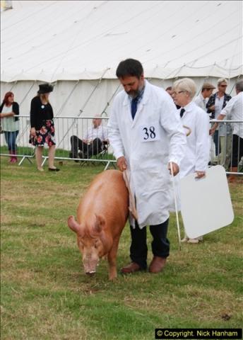 2014-09-06 Dorset County Show, Dorchester, Dorset (403)403