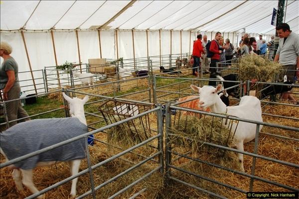 2014-09-06 Dorset County Show, Dorchester, Dorset (405)405