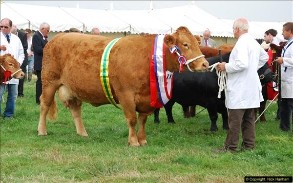 2014-09-06 Dorset County Show, Dorchester, Dorset (466)466