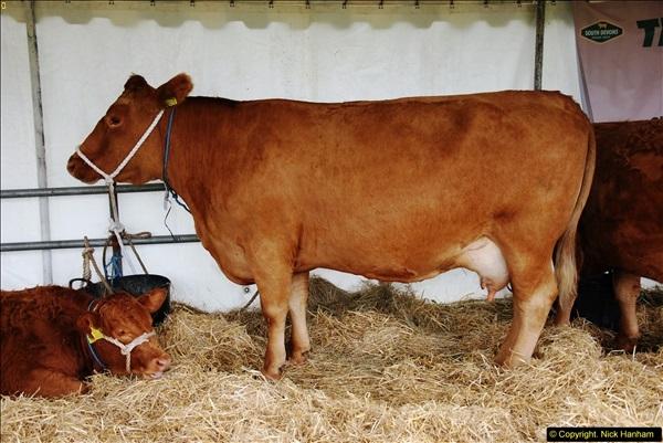 2014-09-06 Dorset County Show, Dorchester, Dorset (470)470