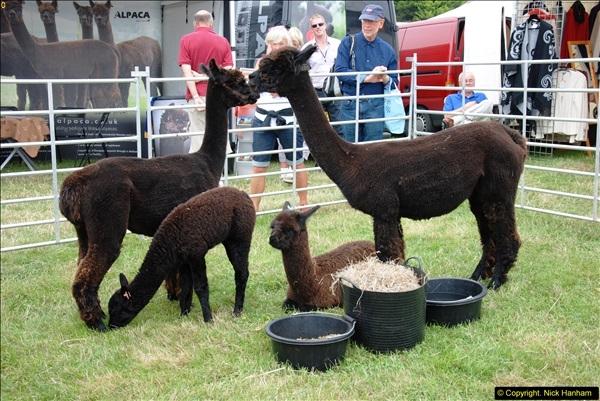 2014-09-06 Dorset County Show, Dorchester, Dorset (483)483