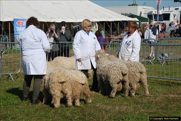2015-09-06 The Dorset County Show 2015.  (259)259